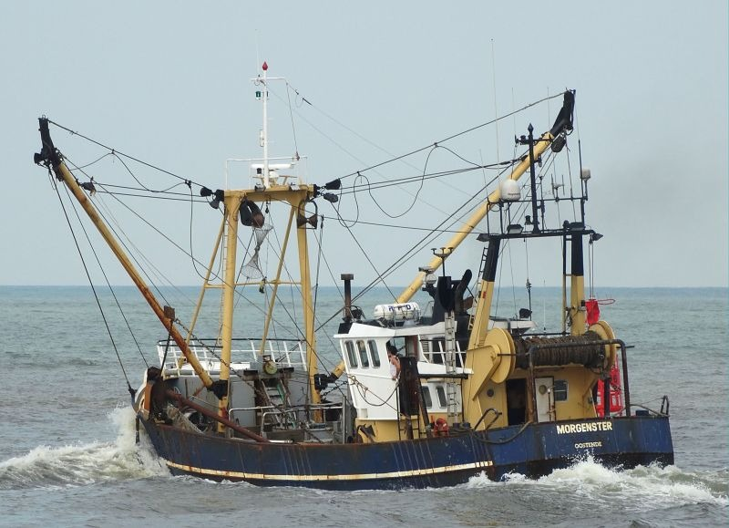 commission sustainable fisheries