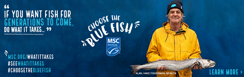 Cornish Hake MSC Certification