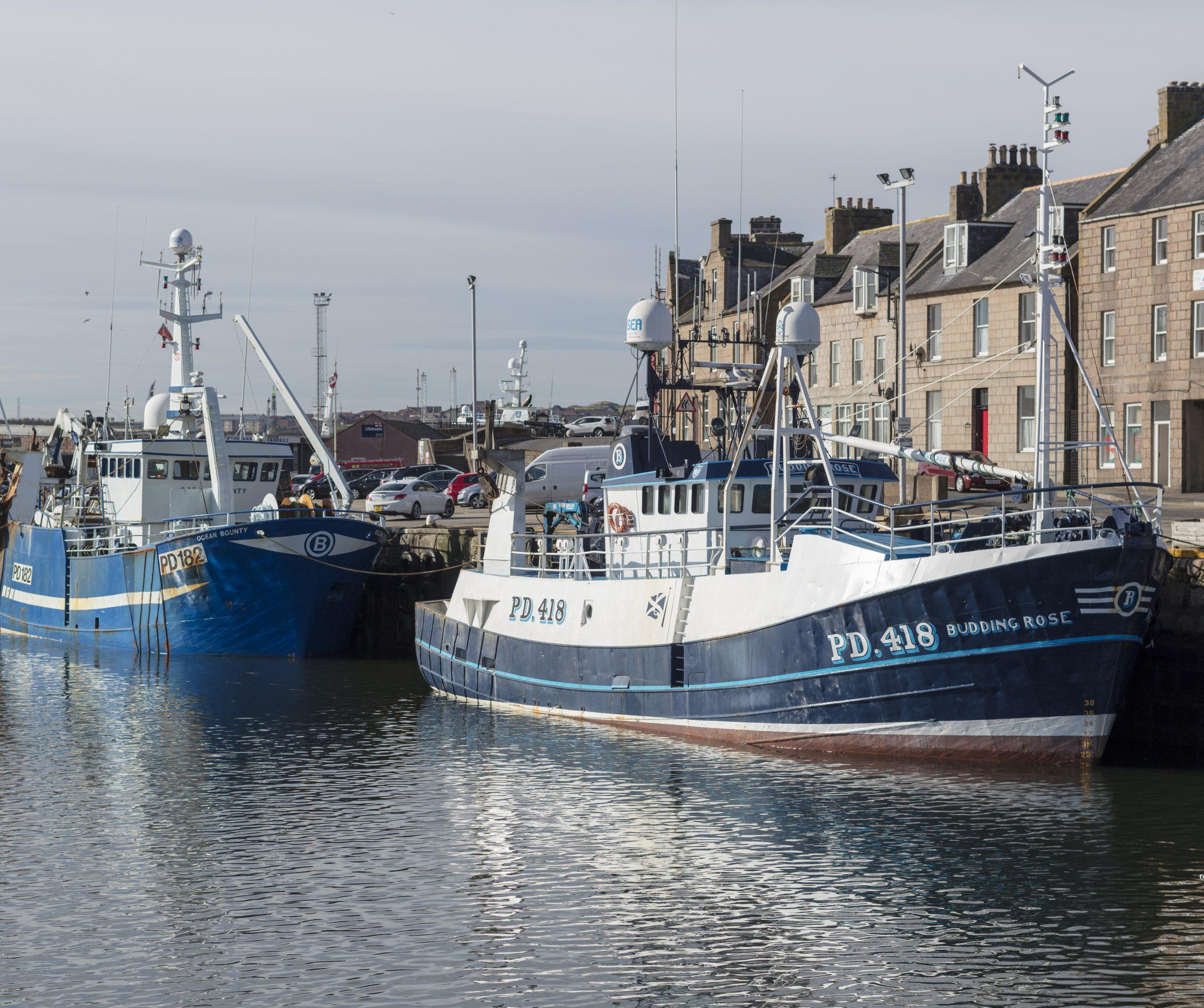 scotland replacement emff