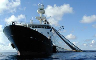 IMO webinars put fishing vessel safety high on the agenda