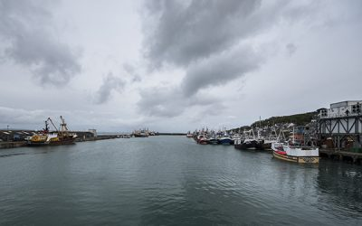 UK Fishing Industry Warning as further COVID-19 Restrictions Bite Hard