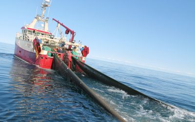 ICES issues report to EU on defining state-of-the-art fishing gear