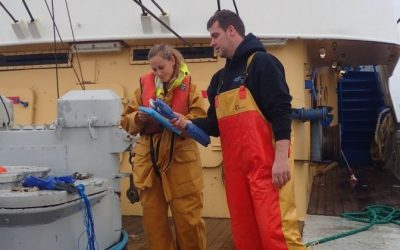NFFO calls on UK fishing industry to support fisheries data collection