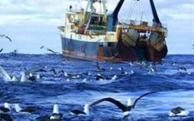 North-East Atlantic Fisheries Commission holds Annual Meeting 2020