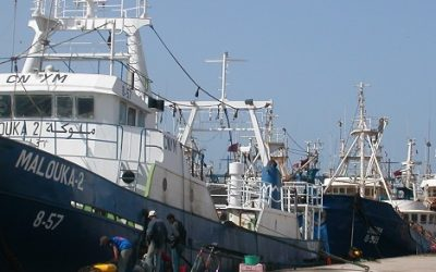 ETF and Europêche host webinar ILO Work in Fishing Convention