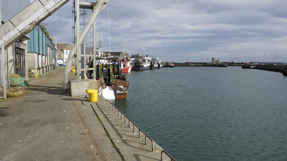ireland's fishing industry