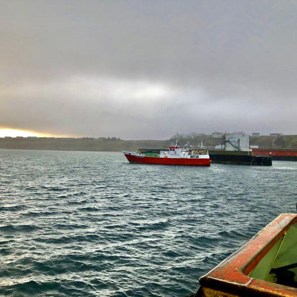 fish shetland water eu