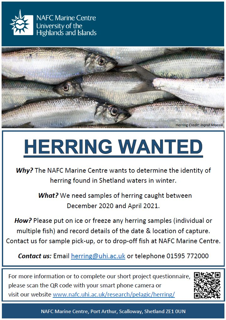 The NAFC Marine Centre UHI is asking Shetland fishermen for help with a new project to determine the identity of herring found in local waters
