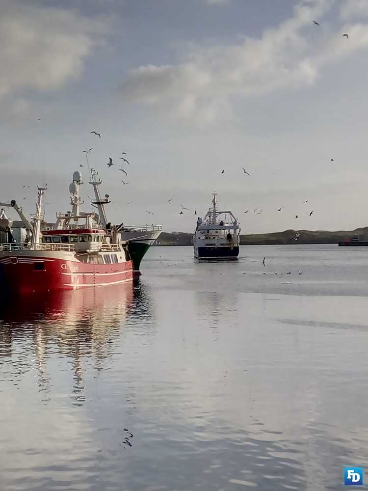 minister irish fishing sector