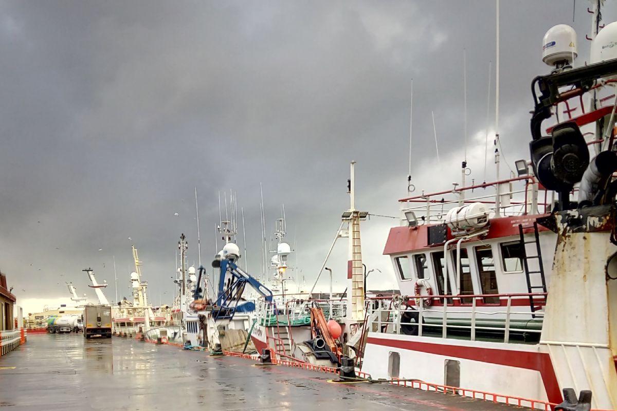 The Brexit deal has failed Irish fishermen says Killybegs Fishermen's Organisation