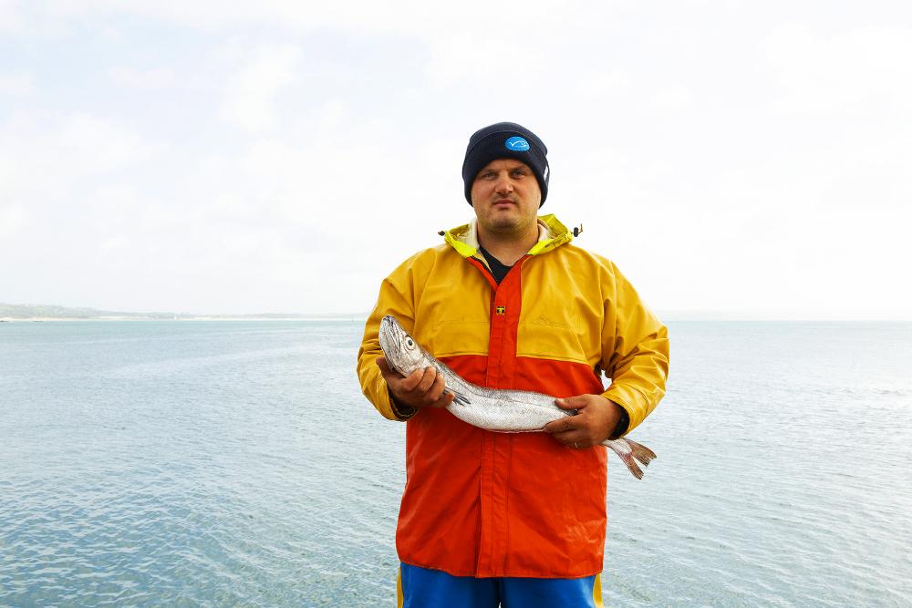 msc recertification cornish hake