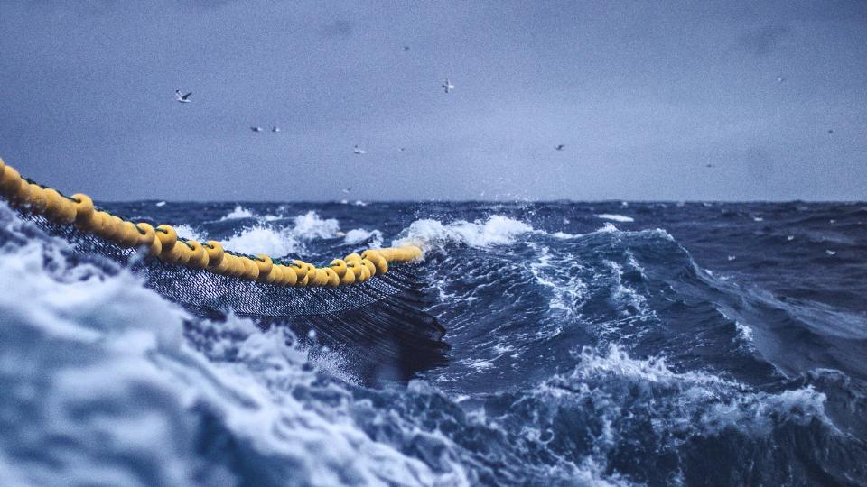 scottish brexit fisheries agreement
