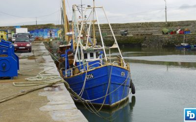 IS&WFPO Chief says Future of Irish Fishing Industry in Minister's Hands