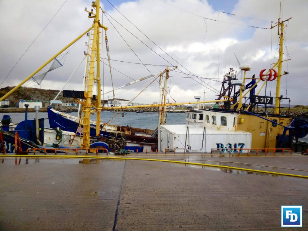 Anifpo in Northern Ireland has welcomed Minister for the Marine Charlie McConalogue's decision to commission five more designated landing ports