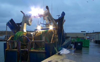 Brexit Chaos Forces Scottish fishing vessels to Danish port of Hanstholm