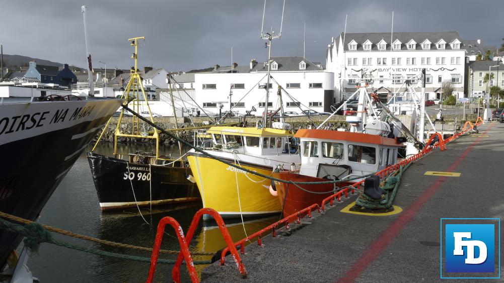 BIM national seafood survey