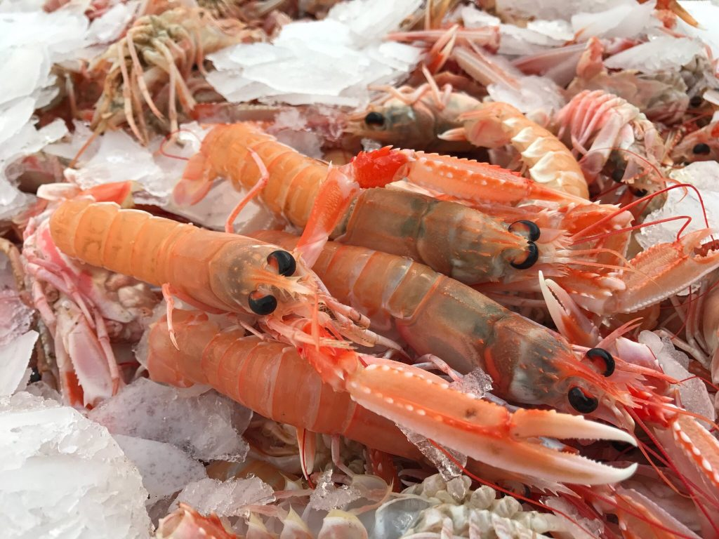 The Scottish Seafood Association say they are extremely disappointed that members who export to the EU were being hit by unnecessary delays