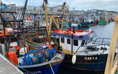 Plymouth City Council invites fishing community to give views on trade deal