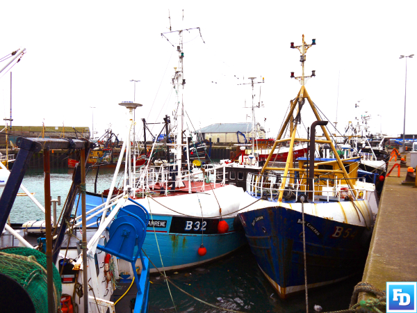 Fisheries Minister Edwin Poots wants a fair share of fishing quota for NI fishermen