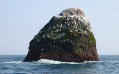 Joint Statement by Irish Foreign Affairs and Marine Ministers on Rockall