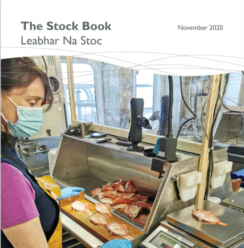irish 2020 stock book