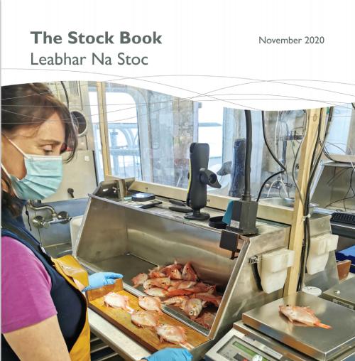 irish 2020 stock book