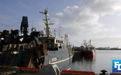 Burden sharing imperative for survival of Irish fishermen says KFO Chief