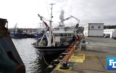MacManus calls for EU clarification on reported loss to Irish Fishing Quota