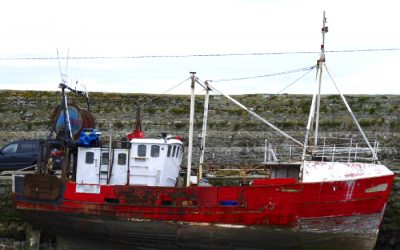 Common Fisheries Policy fails to meet objectives claims Marine Biologist