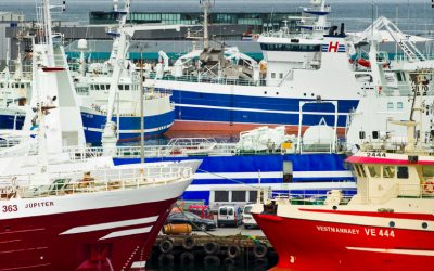 """Icelandic Directorate of Fisheries watches """"people sh*t"""""""