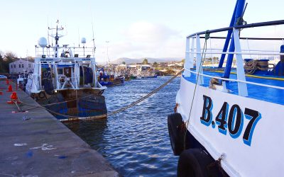 DAERA issues conditions for Irish Sea Haddock Fishery 2021