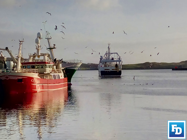 The DAFM has outlined the EU Commission's Administrative Inquiry in relation to Ireland's capacity to apply the rules of the CFP