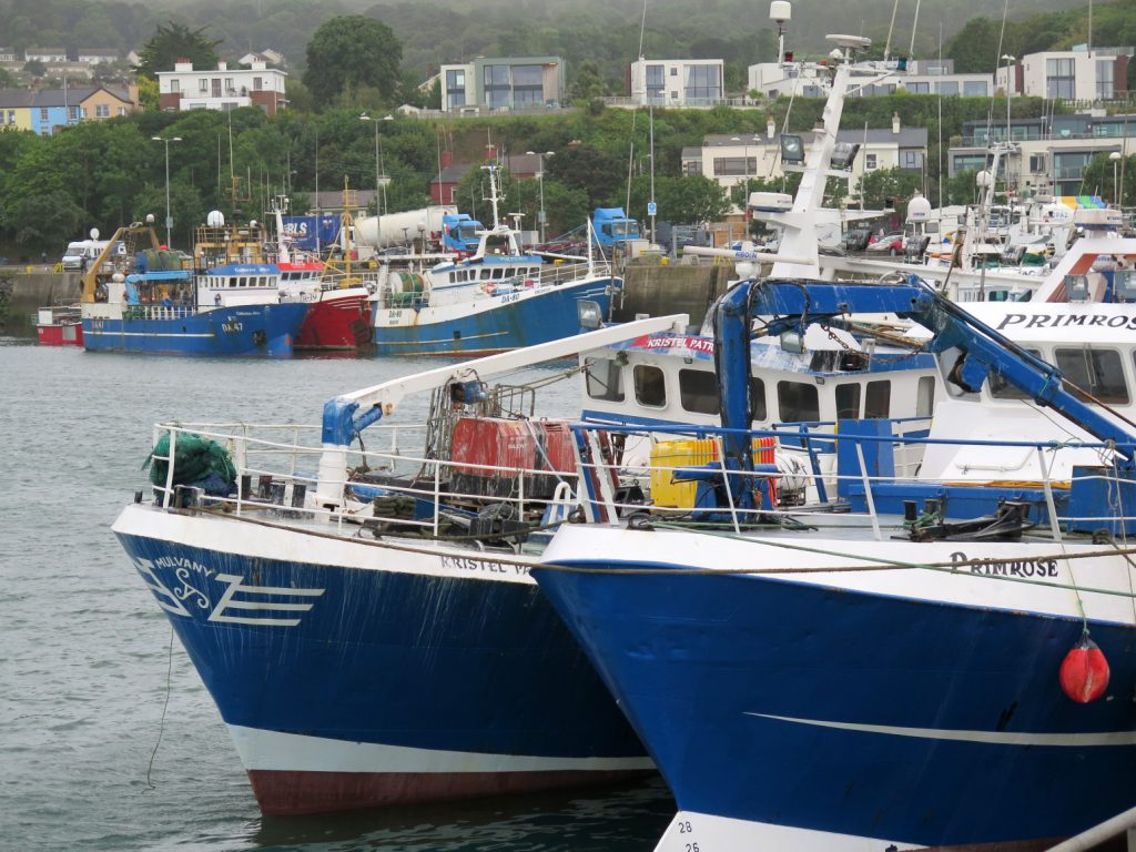 has reiterated Ireland's concerns and priorities for the EU/UK consultations on fishing opportunities for 2021