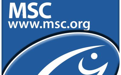 MSC addresses ongoing impact of Covid-19 with temporary requirements