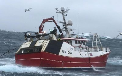 NFFO Keeps Pressure on Government for Financial Support for Fishers