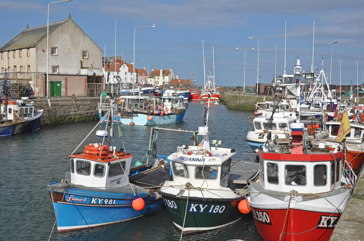 The Scottish Seafood Industry can now apply for funding through the Seafood Producers Resilience Fund portal which is now live