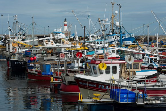The UK Government is in denial and is ignoring the deepening crisis in the seafood industry as a poorly thought-out Brexit deal