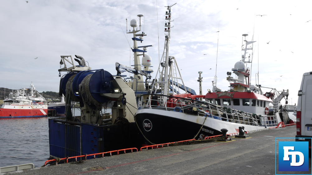 The Director-General of DG MARE has said no new quota allocations for Irish fishing industry