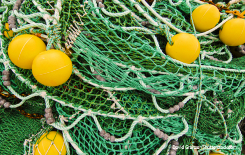 EU North Pacific Fisheries