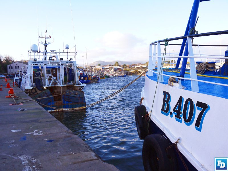 Anfipo Chief, Alan McCulla claims as he feared, Westminster has plundered the Northern Ireland fishing industry's Brexit dividend