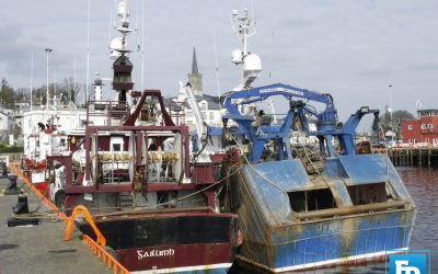 Minister McConalogue addresses inaugural meeting of Seafood Sector Taskforce