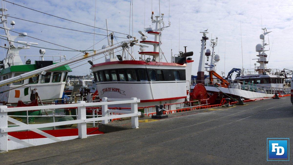 The Irish fishing, seafood and coastal communities are demanding answers are demanding answers about the cosy cartel writes the IFSA