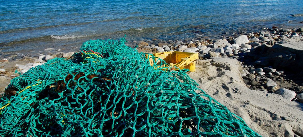 Sinn Féin MEP calls on the EU and Member States to be proactive on ocean pollution and outlines the need for marine litter to be tackled now. Photo: Oceana