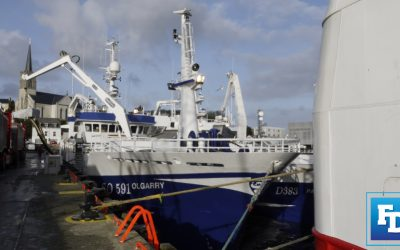 Facing the Facts – Irish Fishing and Seafood Alliance