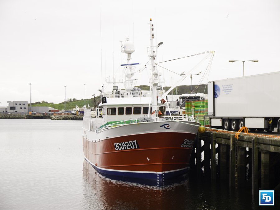 Ireland is the Village Idiots of the EU Community writes Cormac Burk, Chair of the Irish Fishing and Seafood Alliance (IFSA)