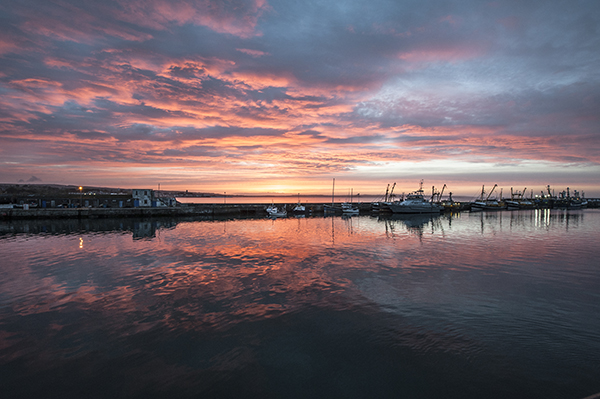 The NFFO fears the Scottish fishing industry has priority in the UK Government's plans