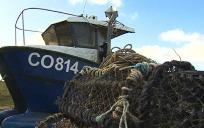 £1.3m for Welsh seafood sector to help deal with Brexit and Covid impacts