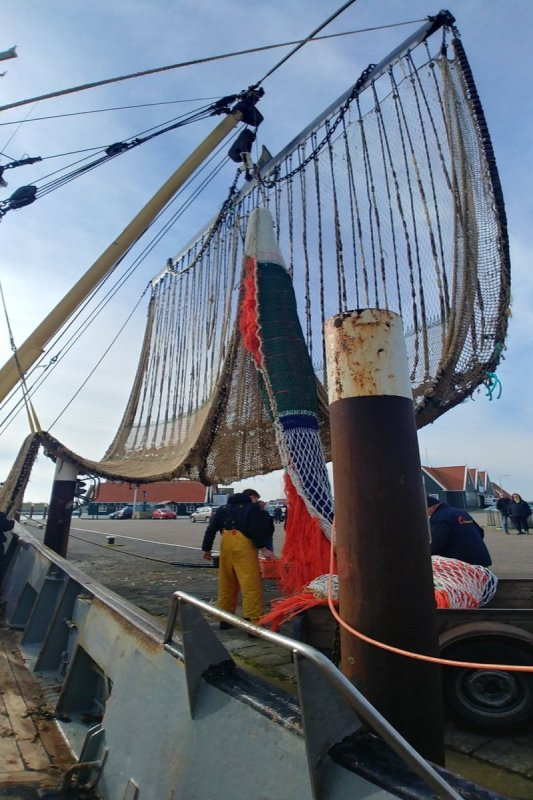 LIFE and 36 European fishers demand reimbursement of illegal subsidies paid by the EU Commission to Dutch electric-pulse fishing vessels owners