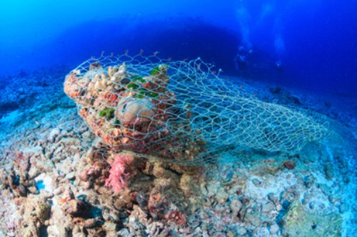 The European Parliament has urged the EU to take drastic action to reduce marine litter including boosting recycling in the fisheries sector