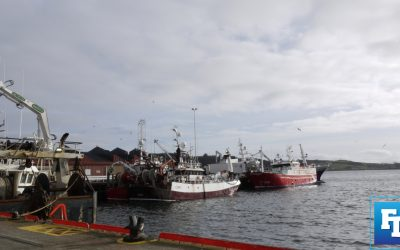 SFPA says interim measures for weighing fish to remain in place until June